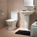 Serenada Vitra Traditional Bathroom